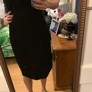 Nordstrom Rafaella Black Lined Pencil Skirt